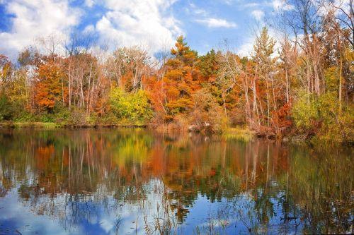autumn fall season