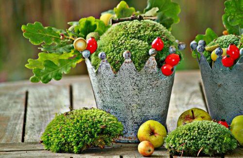 autumn autumn decoration decoration
