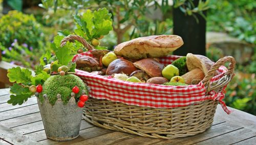 autumn mushrooms basket