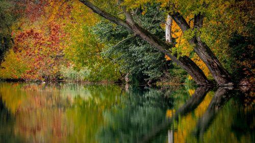 autumn colors colored