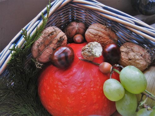 autumn basket autumn fruits autumn