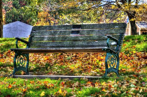kritimas, ruduo, lapija, stendas, sėdynė, Vermont, sezoninis, rudens stendas