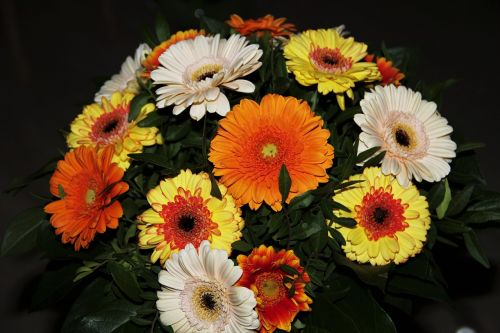 autumn flowers gerbera bouquet