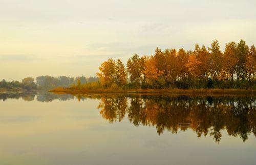akmenys, miškas, upė, dangus, kraštovaizdis, ruduo, šviesus, rudens kraštovaizdis