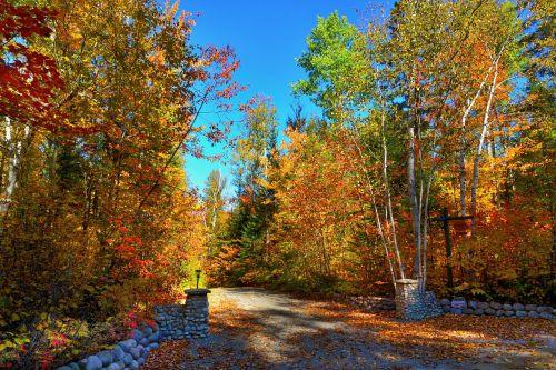 autumn landscape fall landscape