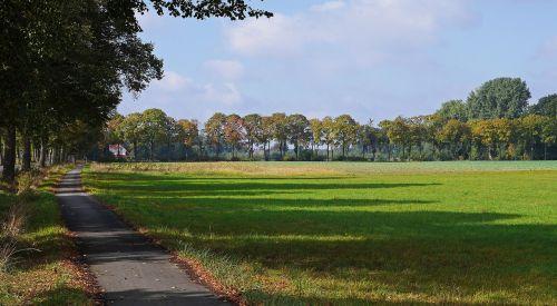 rudens kraštovaizdis,šešėlis,atsiras,spalvinga,alėja,lindenallee,kaštonų prospektas,Dviračių takas,kelias,šviesa ir šešėlis,gamta,ruduo,žalias,kraštovaizdis,Münsterland,plokščią žemę,butas,westfalen,Vokietija,pieva,žolė,ilgas šešėlis,Šiaurės Reinas,Vestfalija