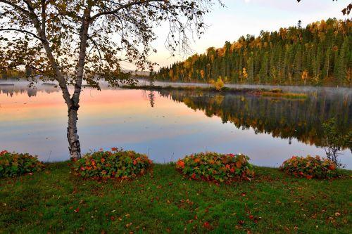autumn landscape lake trees