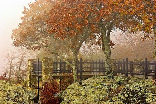 autumn petit jean fog  fog  mist