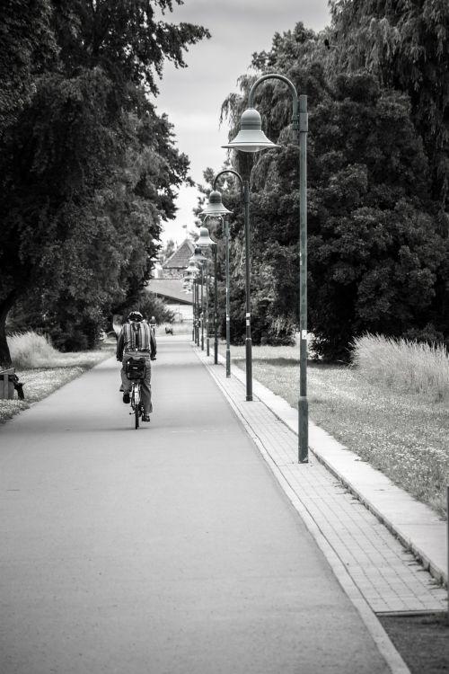 avenue lanterns cyclists