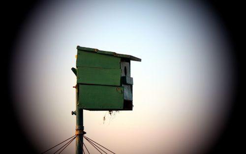 aviary nesting box hatchery