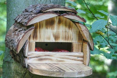 aviary bird feeder interesting