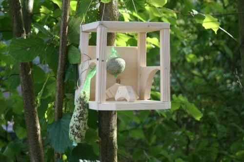 aviary home birds