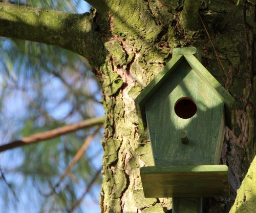aviary tree nesting box
