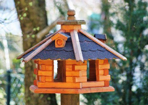 aviary bird feed