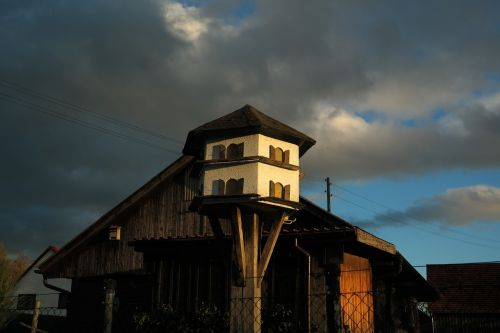 aviary pigeon house hut