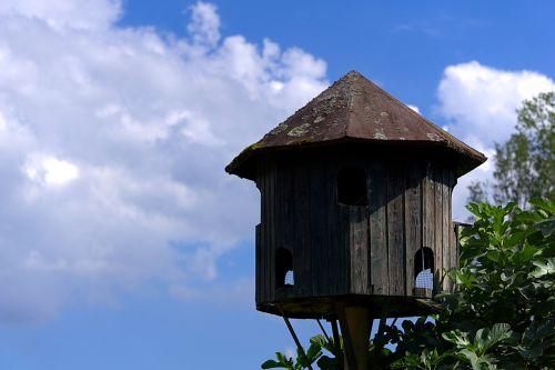 aviary pigeon house sky