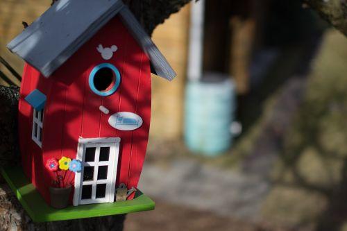 aviary nest bird