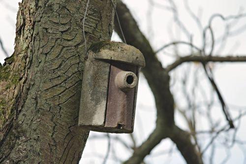 aviary nesting box nature conservation