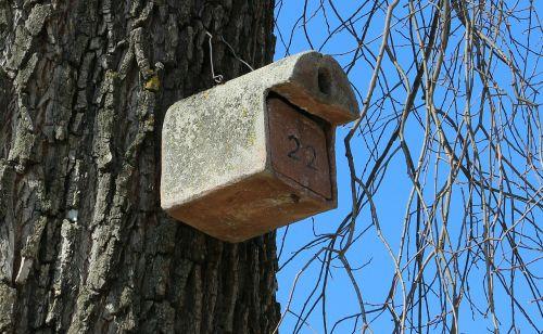 aviary bird feeder nesting help