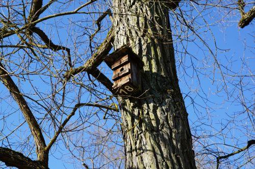 aviary tree nature