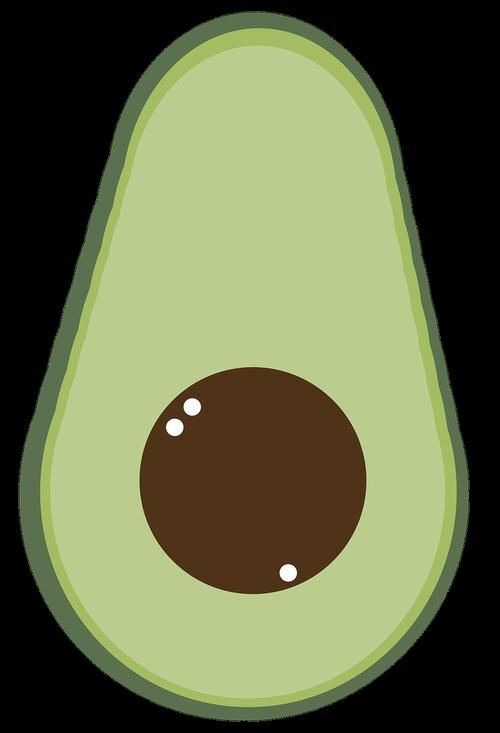 avocado  fresh  green