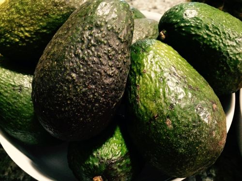 avocados fruit fat