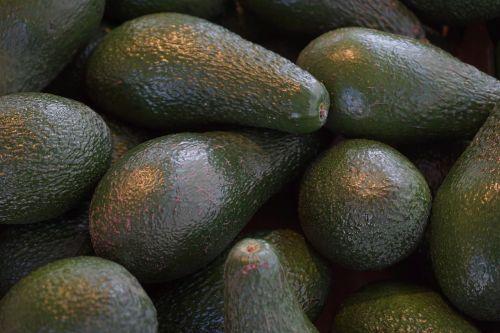 avocados avocado fruit fruits
