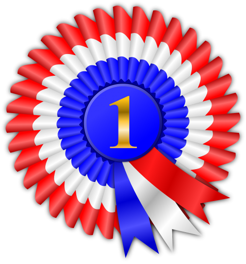 award prize ribbon