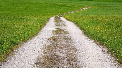 toli,juostos,gamta,kraštovaizdžio kelias,pieva,ganykla,žalias,platus,toli,takas,vaikščioti,žygiai