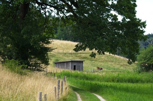away meadow pasture