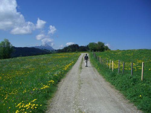 away panorama trail hiking