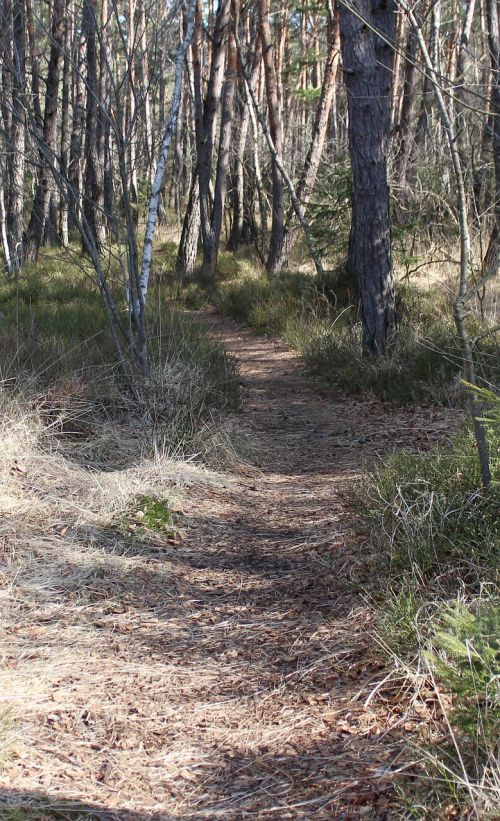away path hiking