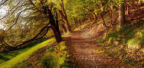 away autumn golden autumn