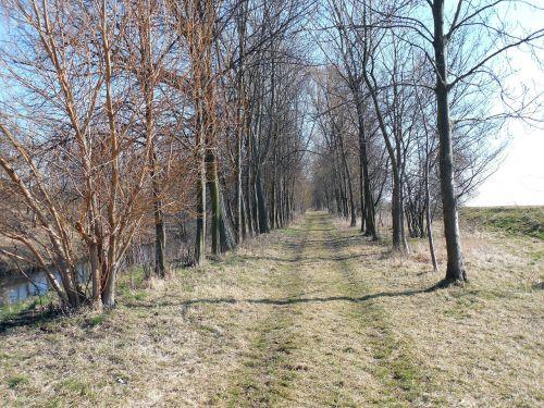 away hiking path