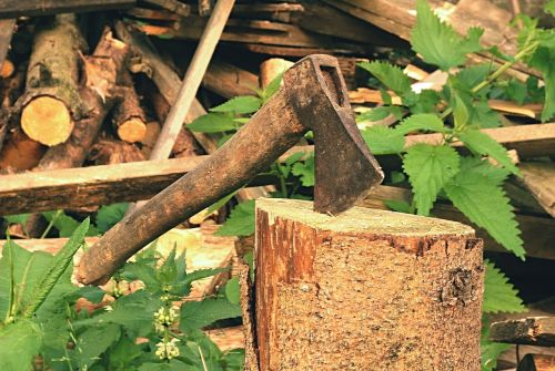 axe,old,lumberjack,blade,background,log,chop,hatchet,block,work,tree,wood,metal,equipment,cut,handle,sawn timber,green,rusty,forest,wooden,steel,tool