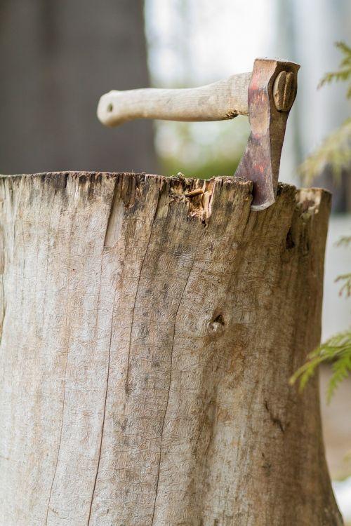 ax wood hoe