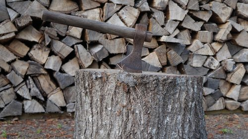 axe  wood  lumberjack