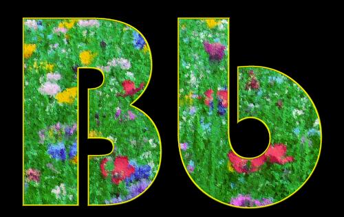 b,laiškas,abėcėlė,šrifto,pavasaris,pieva,gėlės,spalvos