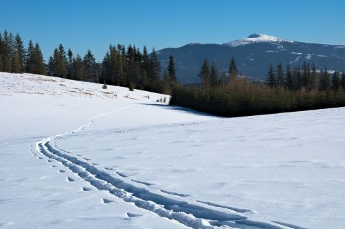 babia top winter trail