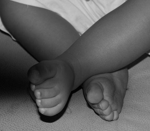 baby small child child