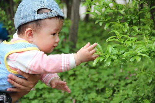 baby tree cute