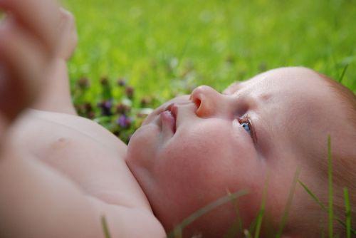 baby turf child