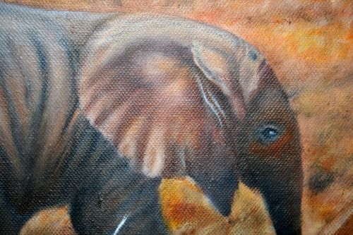 Baby Elephant In Oil On Canvas