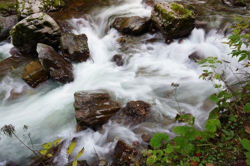 Bachas,vanduo,minkštas vanduo,kraštovaizdis,natūralus vanduo,vanduo veikia,torrent,fonas