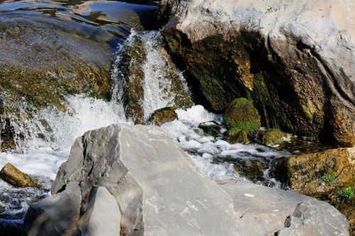 bach creek water