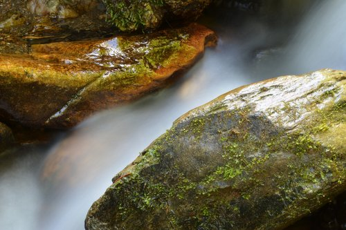 bach  water  stones