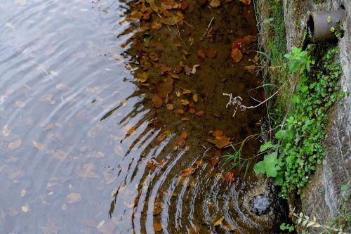 bach water running wall
