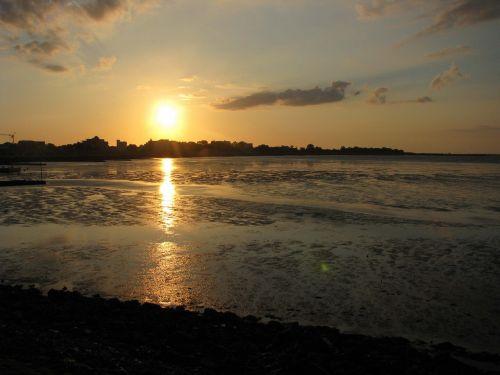 back light watts low tide