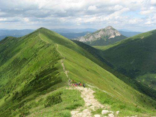 back of the ridge hiking trail