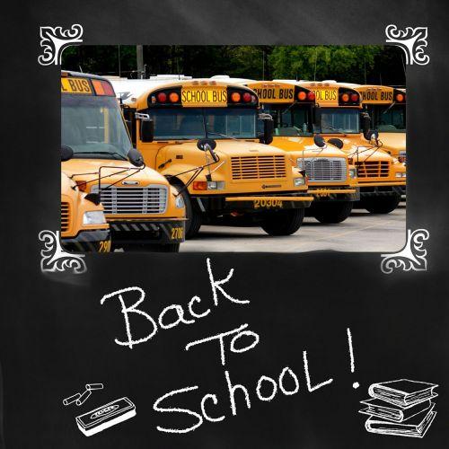 back to school school bus bus